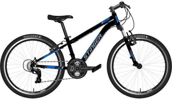 """139829 2 - Велосипед Stinger ELEMENT STD, р.14, цвет чёрный, 2020г., колеса 24"""""""